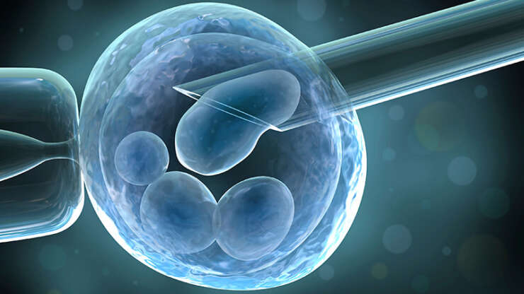Does ICSI Increases the Success Rate of IVF Treatment?
